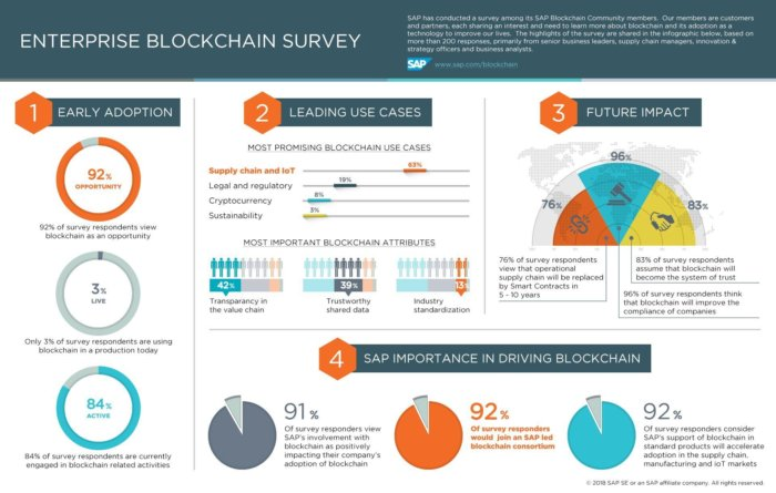 blockchain survey infographic
