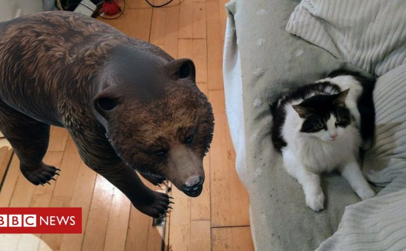 Google's AR animals entertain Android users